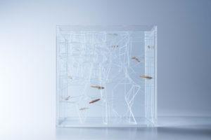 haruka-misawas-sculptural-fish-tanks-5